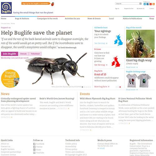 Screenshot of Buglife